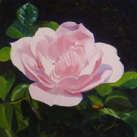 "thumbnail image of painting ""A Rose in Bloom"""