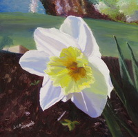 "thumbnail image of painting ""Daffodil in the Sun"""